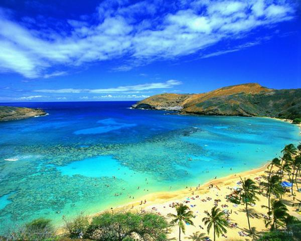Travel Club's Next Destination Will Be the South Pacific