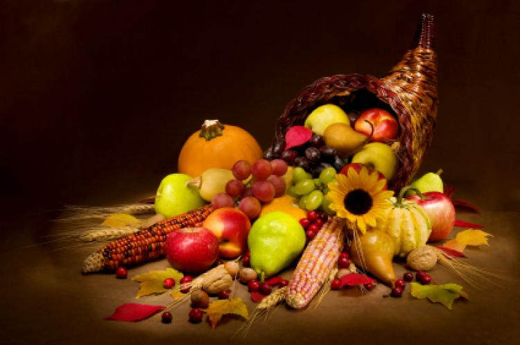 What Does Thanksgiving Really Mean?