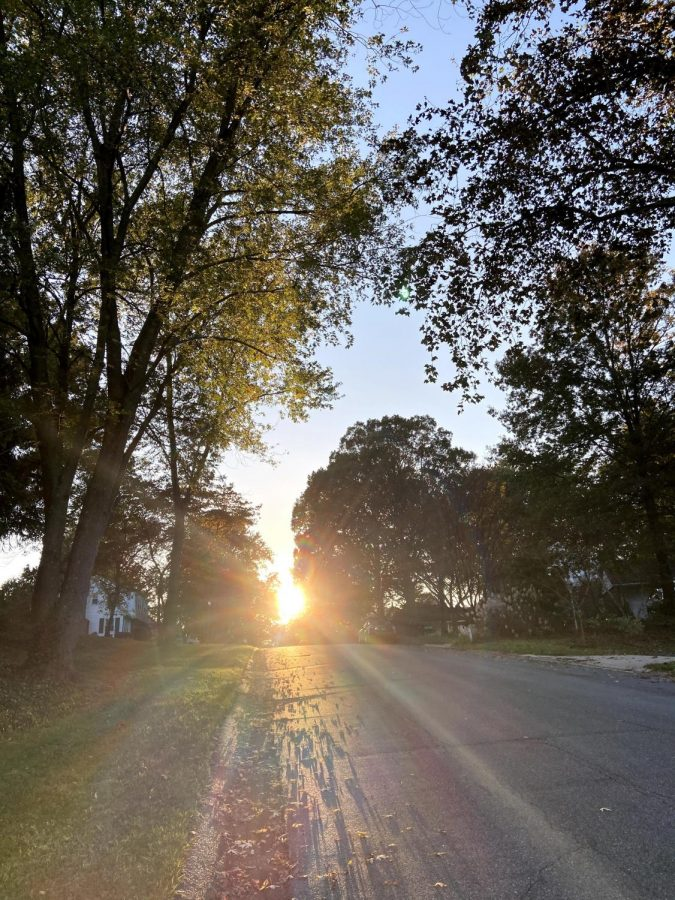 The sun setting, between trees, shinning at the end of a road